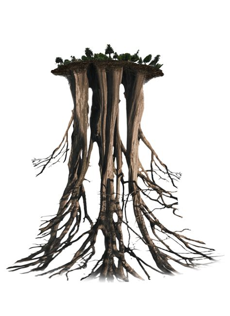 can you buy macafem root in a store picture 6