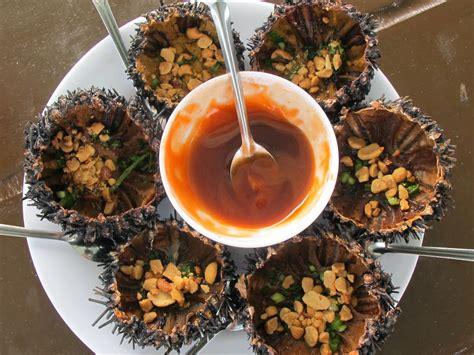 cholesterol in sea urchin picture 11