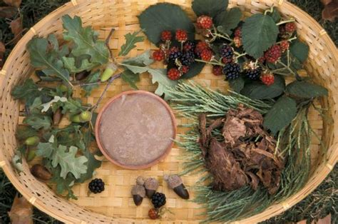 california indian diet picture 1