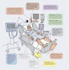 Research done on blood pressure and body positioning picture 16