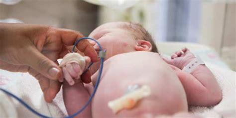 pregnant women ko thyroid me kya khana chahiye picture 23