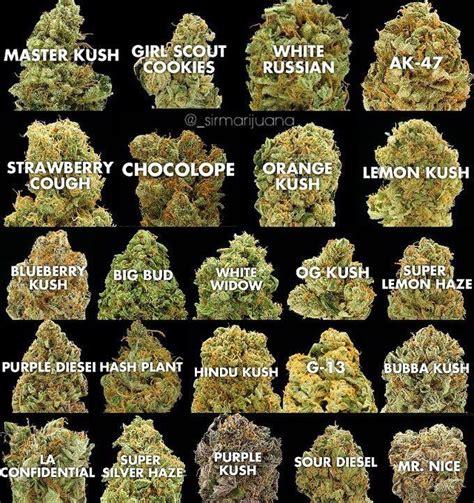 how do you smoke marijuana picture 14