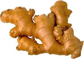 ginger picture 6