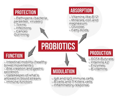 benefits of probiotics picture 7
