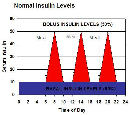 hgh levels throughout the day picture 6