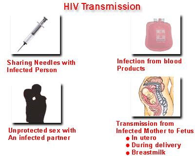 u2 how can hiv be prevented picture 2