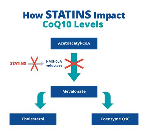coq10 deficiency/statin drug picture 14