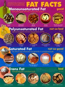 Cholesterol dietary information picture 3