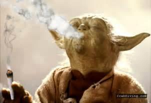 herbal cigerettes picture 2