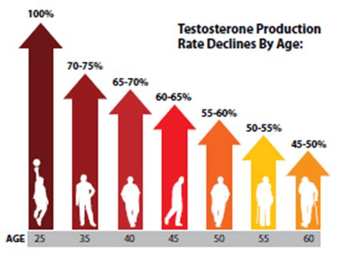 what is the difference between testosterone free and total picture 3