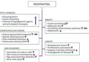 resveratrol benefits picture 6