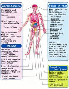 what are the effects on the body from picture 14