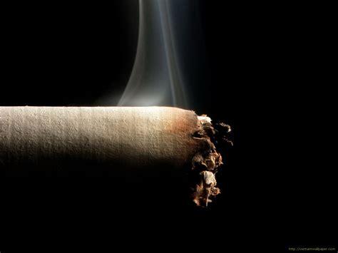 smoke pipe tobacco picture 7