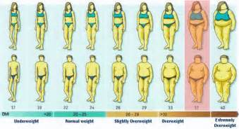 best belly and fat burning formula picture 9
