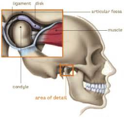 boca raton temporo-mandibular joint dysfunction picture 9