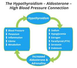 hypothyroidism and secondary high blood pressure picture 1