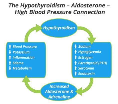 Hypothyrodism and high blood pressure picture 1