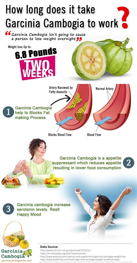 garcinia cambogia + how long will it take picture 1