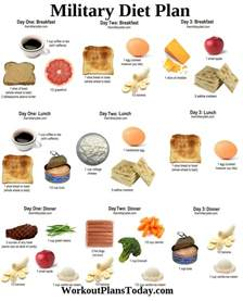 diet plan meals picture 11
