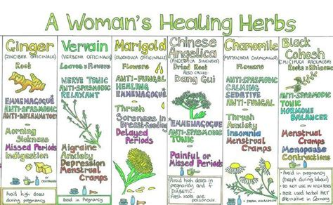 the strongest herbs for a woman to take picture 3