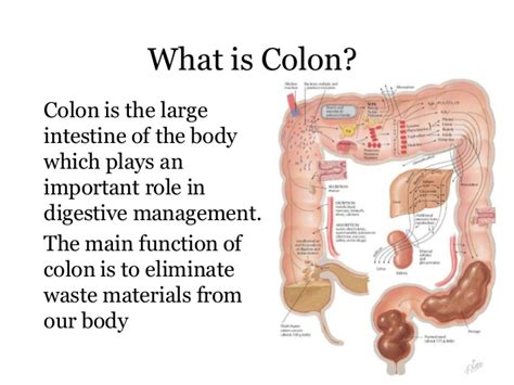 does colon clear formula work picture 17
