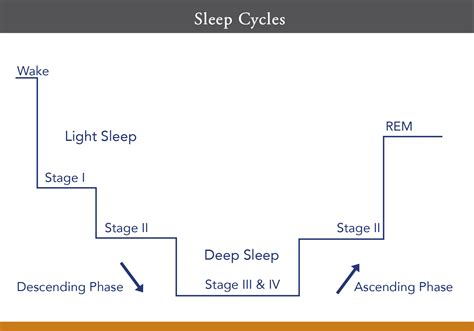 average amount of sleep picture 10