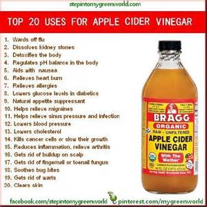 apple cider vinegar and honey diet picture 11