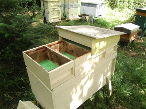 long deep hive picture 1