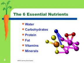 nutrient picture 5