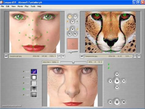 free breast morph software picture 5