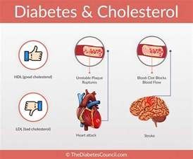 Does exercise affect cholesterol picture 11
