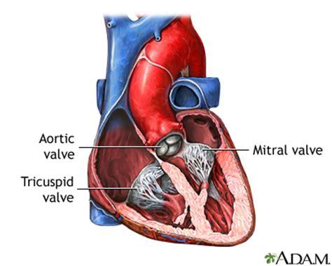 can mitral valve regurgitation may blood pressure low picture 14