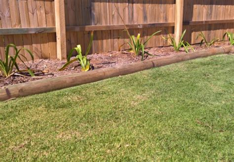 stop lawn growing picture 3