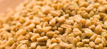 fenugreek is women boobes increse in hindi picture 6
