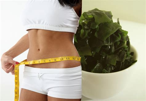 seaweed for weight loss picture 2