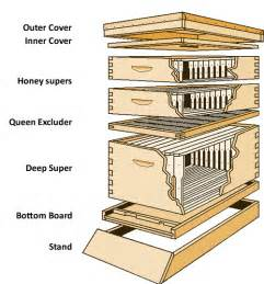 bee hive plans picture 10