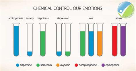 supplements to raise oxytocin levels picture 2
