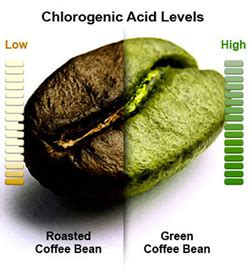 fda and green coffee beans picture 14