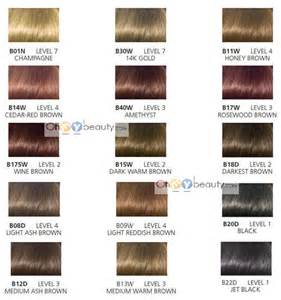 clairol hair chart picture 5