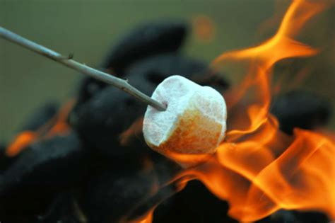 campfire marshmallows picture 4