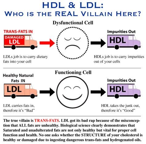 Hdl cholesterol numbers picture 10