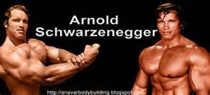 arnold schwarzenegger diet picture 10