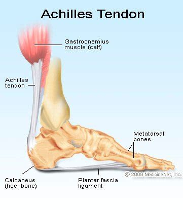 treatment for early arthritis of the knee joint picture 14