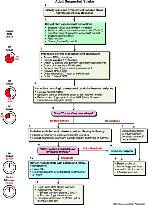 bone marrow suppression from bulimia picture 11