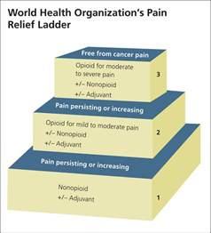 neurontin adjuvant pain relief picture 2