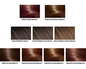 shades of brown hair color picture 11