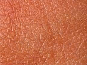 skin texture picture 6
