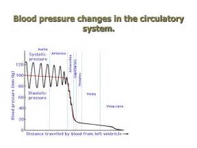 What is the change of blood pressure for picture 5
