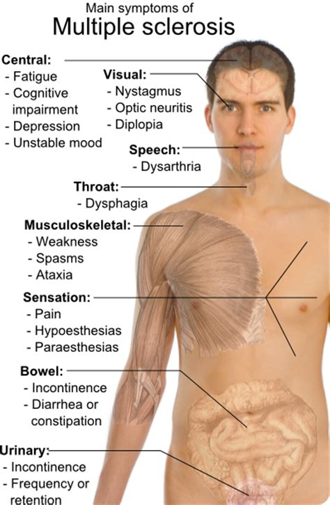 central nervous system injury skin rash picture 4