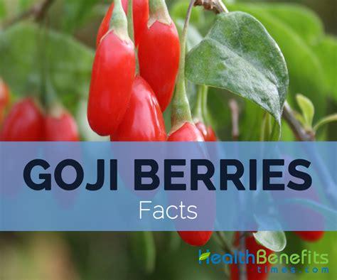 agar health benefits picture 3